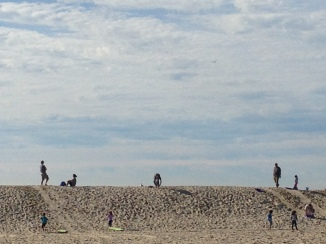 Families sledding on sand